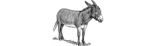 Lait d'ânesse / Lait de chèvre